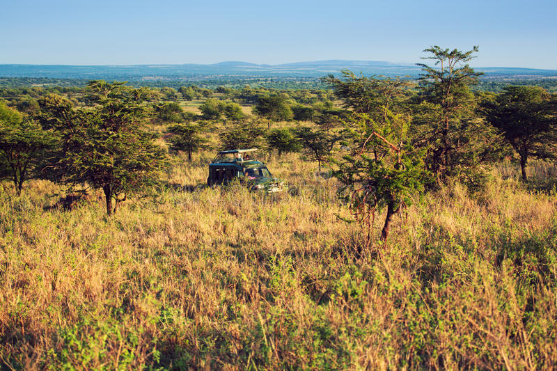 Jeep met toeristen op safari in Serengeti stock foto's