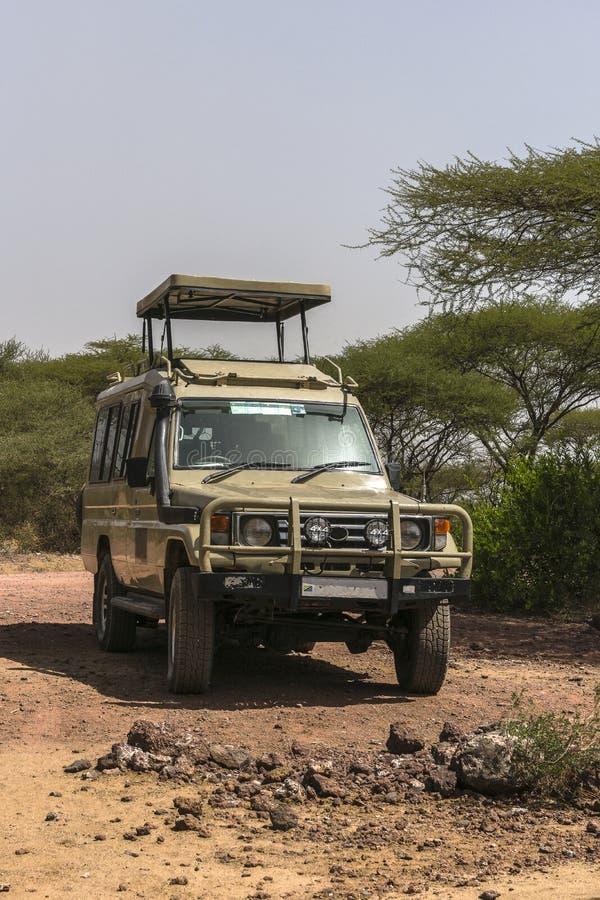 Jeep sul safari fotografie stock libere da diritti