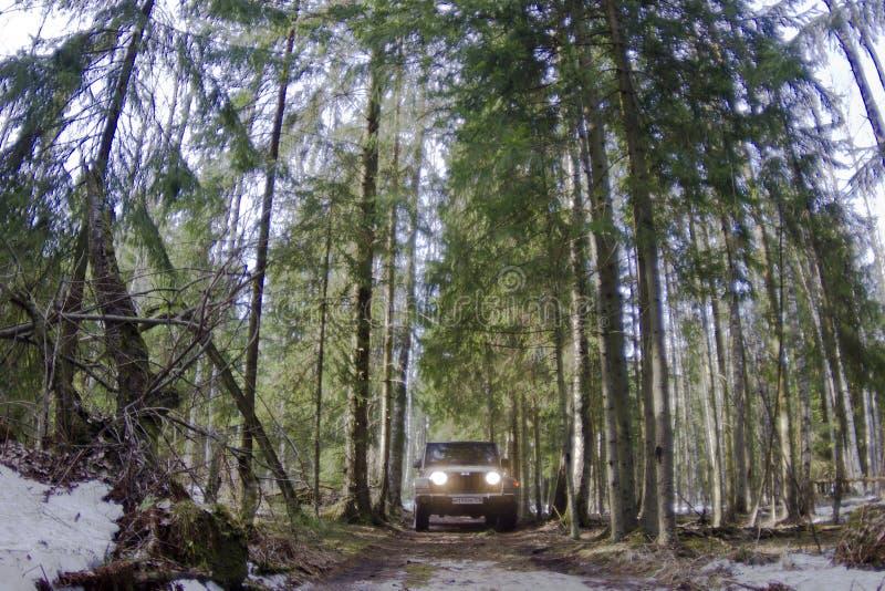 Jeep Wrangler immagini stock