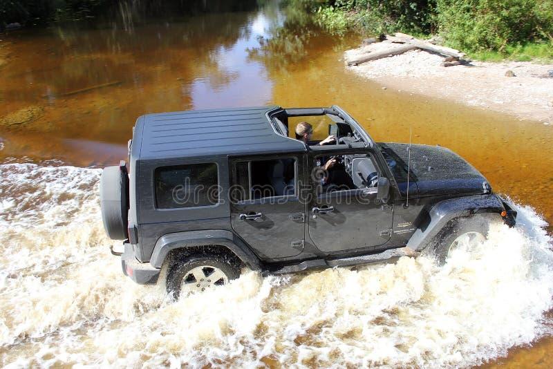 Jeep Wrangler en un bosque del pino imagen de archivo libre de regalías