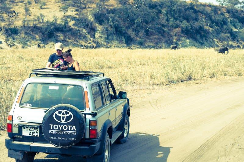 Jeeps op safari in Afrika stock fotografie