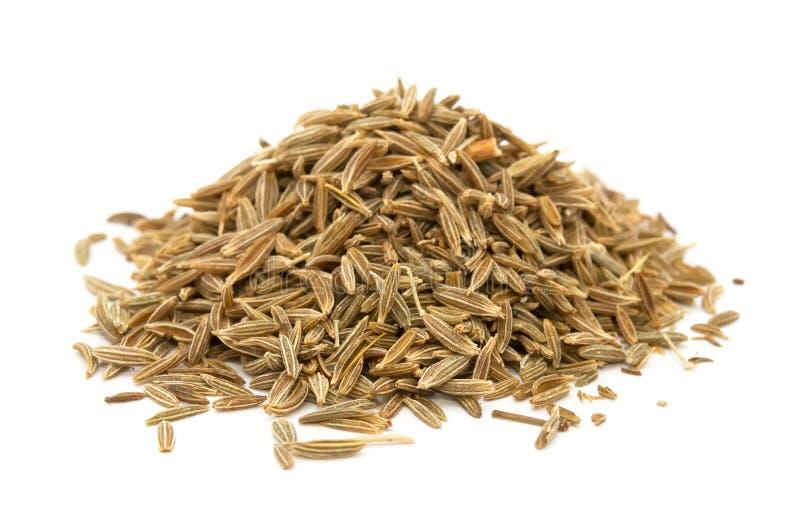 Jeera (sementes de cominhos) imagens de stock
