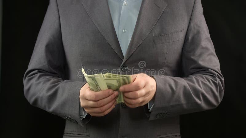 Jefe masculino que cuenta los dólares, dinero que hace, economía, renta del proyecto personal imágenes de archivo libres de regalías