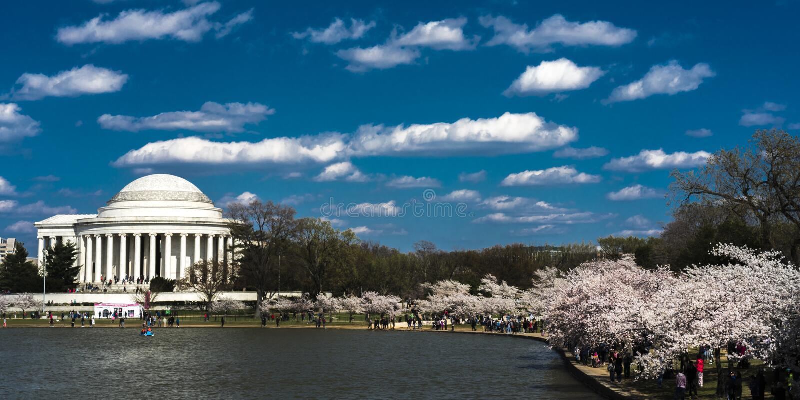 Jefferson мемориальный, приливный таз, Вашингтон d C вишня характеристики стоковое фото