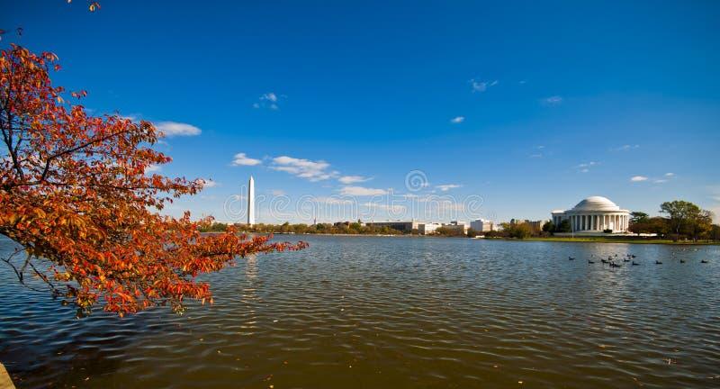 Jefferson мемориальный и приливный таз стоковые фотографии rf