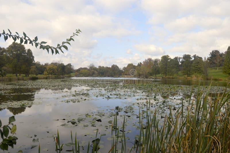 Jefferson Lake in St. Louis lizenzfreie stockfotografie