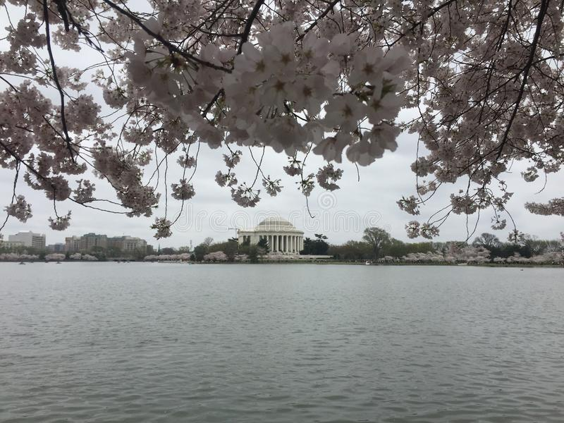 Jefferson Memorial image libre de droits