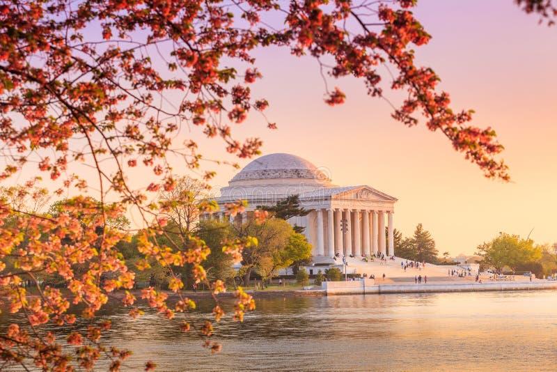 Jefferson Memorial durante Cherry Blossom Festival na C.C. fotos de stock royalty free