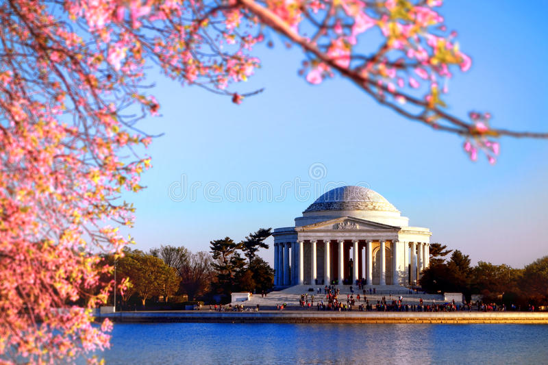 Jefferson Memorial and Pink Cherry Trees in Bloom royalty free stock photos
