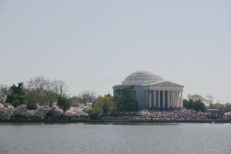 Jefferson Memorial W Kwiatki Obrazy Stock