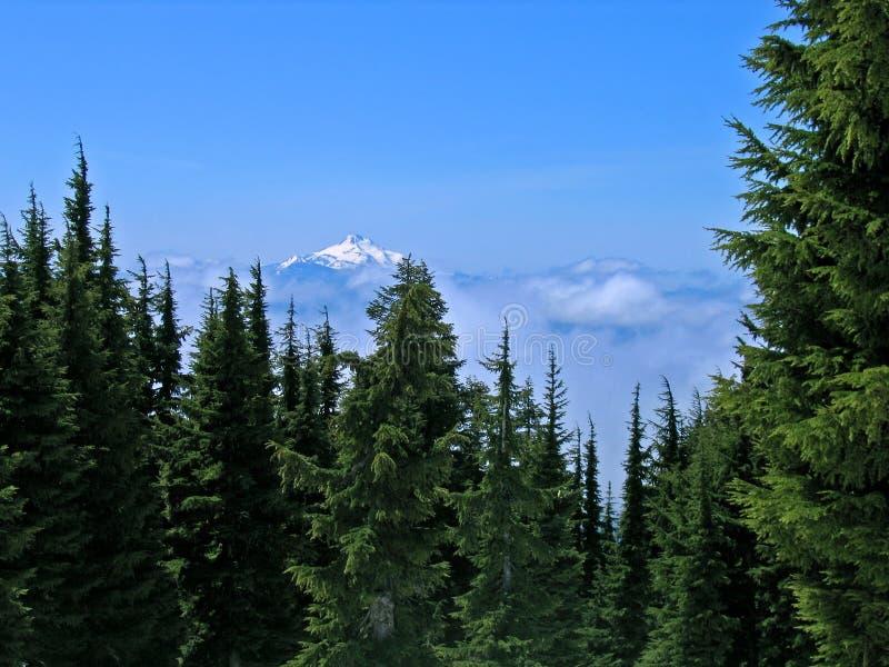 jefferson mt Oregon zdjęcie royalty free