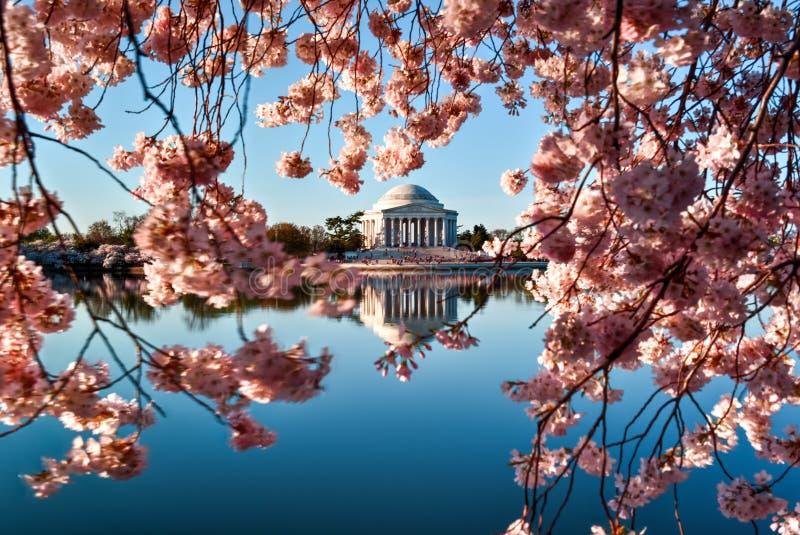 Jefferson pomnik - Waszyngtoński d C fotografia stock