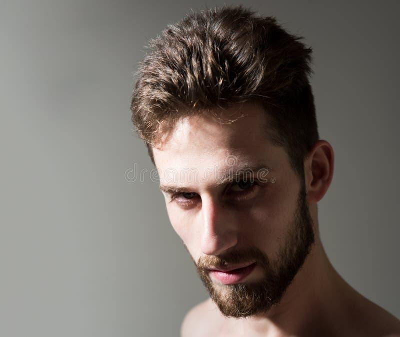 Jego fryzjer męski dostaje jego ostrzyżenia prawi Brodaty mężczyzna potrzebuje broda fryzjera męskiego Mężczyzna w ranku po wakeu obrazy royalty free