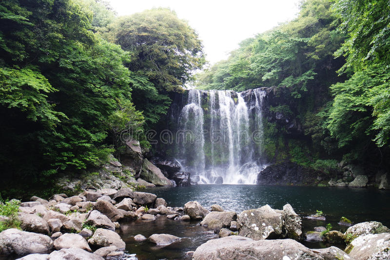 Jeju, caída fotos de archivo libres de regalías