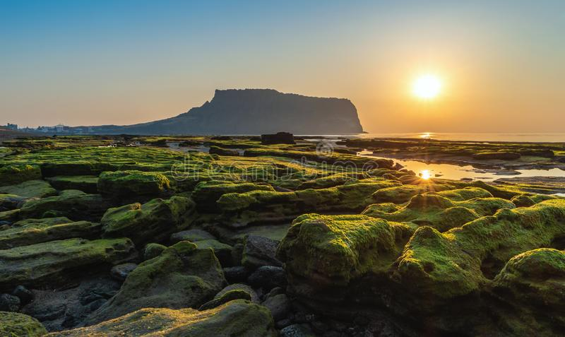 Jeju Island South Korea, Sunrise at Seongsan Ilchulbong. Jeju Island South Korea, Sunrise landscape at Seongsan Ilchulbong royalty free stock images