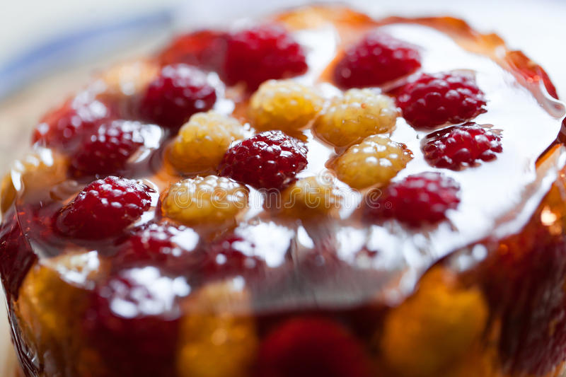 Download Jelly dessert stock photo. Image of raspberry, closeup - 28840528