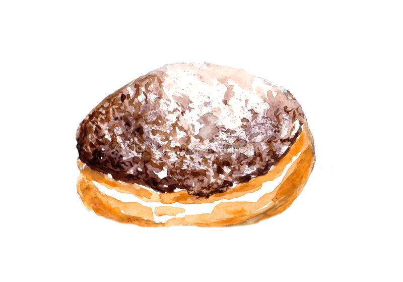 Jelly filled Chocolate doughnut with powdered sugar. Watercolor food illustration, isolated objects on white background. Hand painted Chocolate dessert. Sweet stock illustration