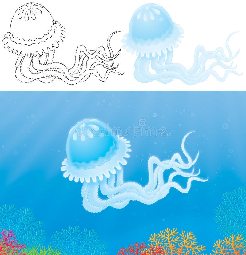 Download Jelly-fish stock illustration. Illustration of fish, shaped - 21746519