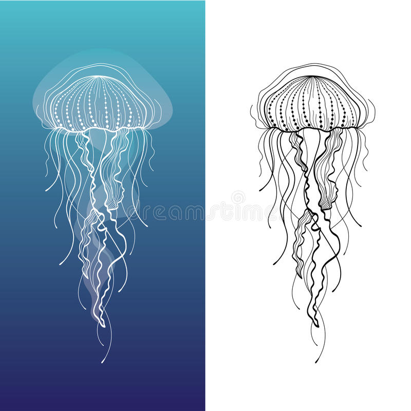 Download Jellyfish 1 stock vector. Image of creature, glowing - 32066994