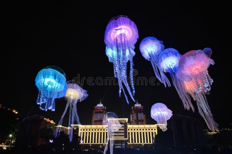 Jellyfish dowodzony oświetlenie fotografia royalty free
