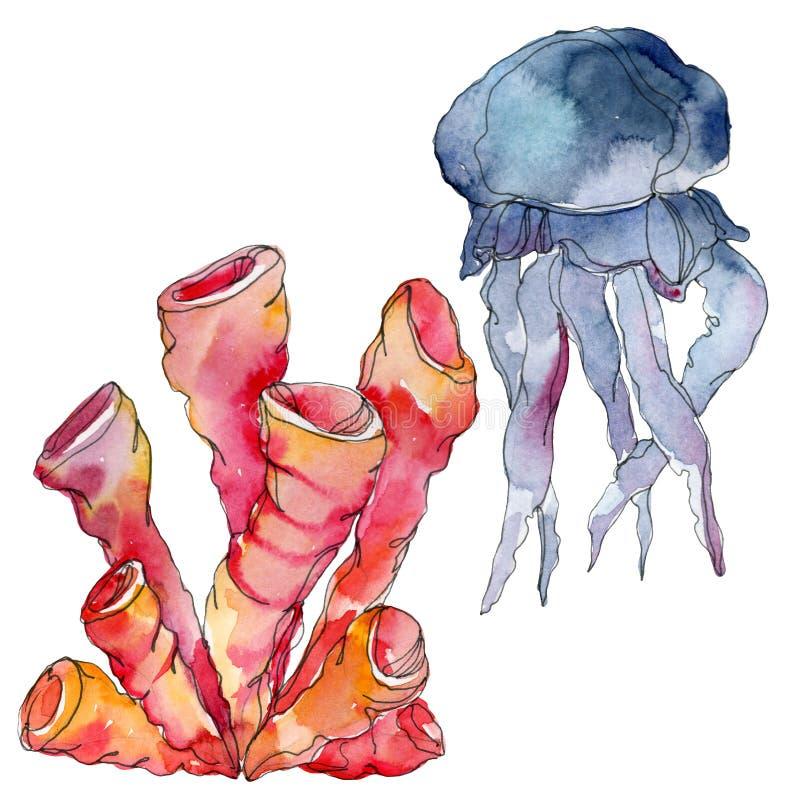 Jellyfish i nadwodna podwodna natury rafa koralowa Tropikalnej rośliny morze odizolowywający Akwareli tła ilustracji set zdjęcia royalty free