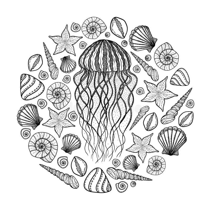 Jellyfish i skorupy w kreskowej sztuki stylu Ręka Rysujący wektorowy illust ilustracji