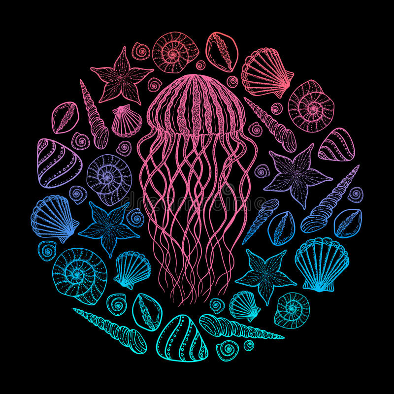 Jellyfish and shells in line art style. Hand drawn vector illustration. Set of ocean elements stock illustration