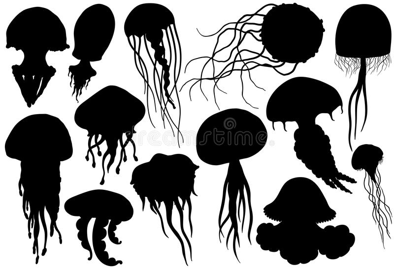 Jellyfish silhouettes set. Sea collection. vector illustration