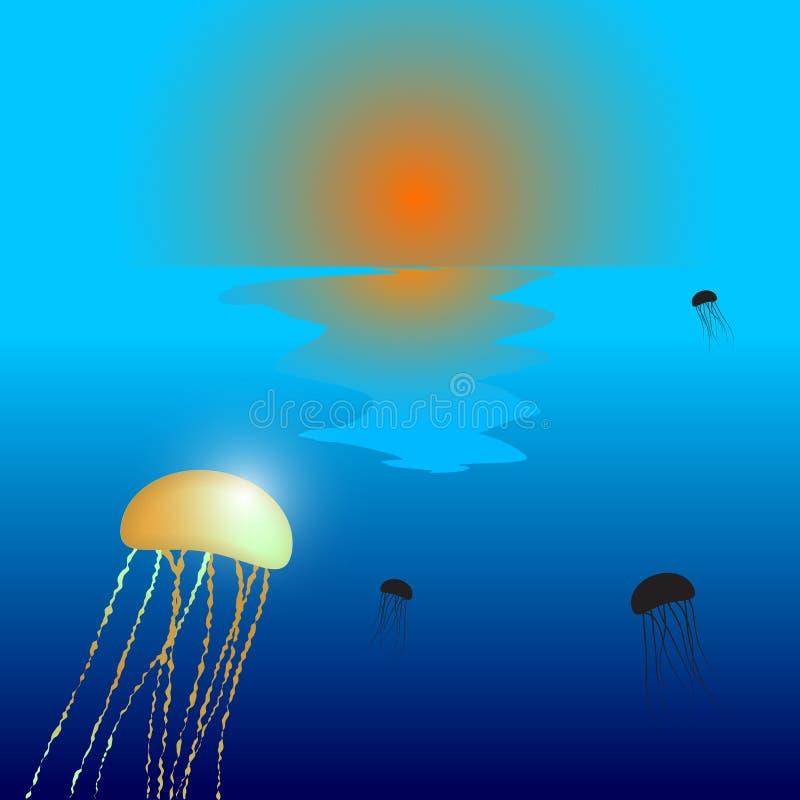 Free Jellyfish Sunset Royalty Free Stock Images - 24632399