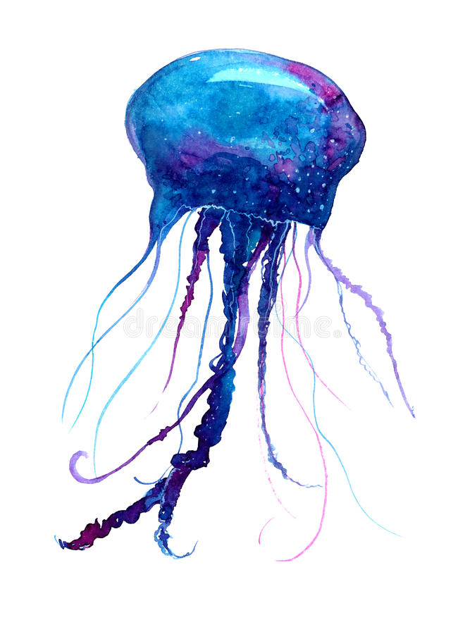 Jellyfish watercolor illustration. Medusa painting isolated on white background, colorful tattoo design stock illustration
