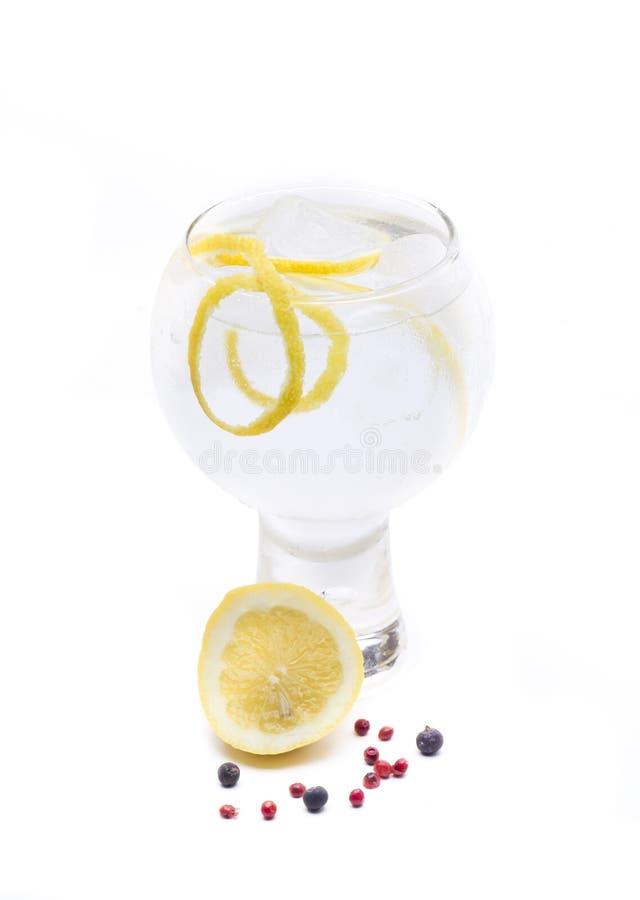 Download Jenever & Tonische Roze Peper Stock Afbeelding - Afbeelding bestaande uit drank, kardemom: 54090289