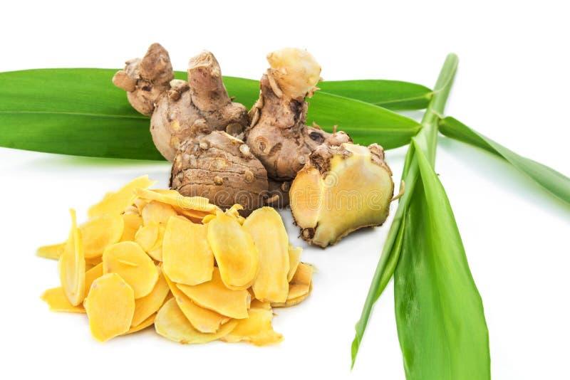 Jengibre de Cassumunar, un ingrediente básico para el aceite tailandés del masaje fotografía de archivo