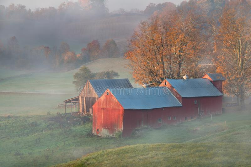 Jenny farm in Morgon Fog in Early Fall, Stow, Vermont royaltyfri fotografi