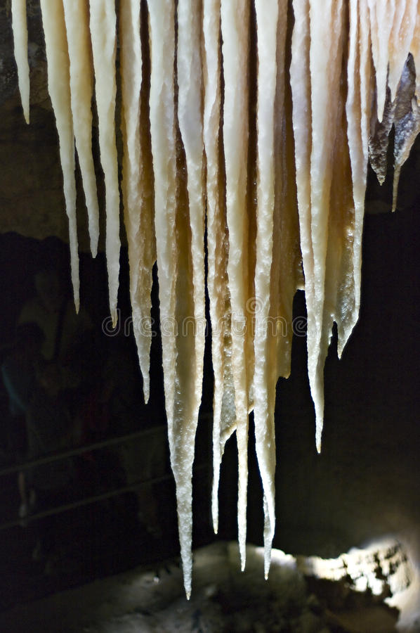 jenolan Australien grottor arkivfoto