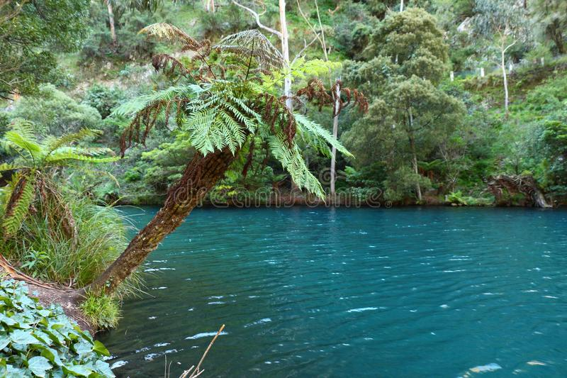 Jenolan cava o lago azul imagem de stock royalty free