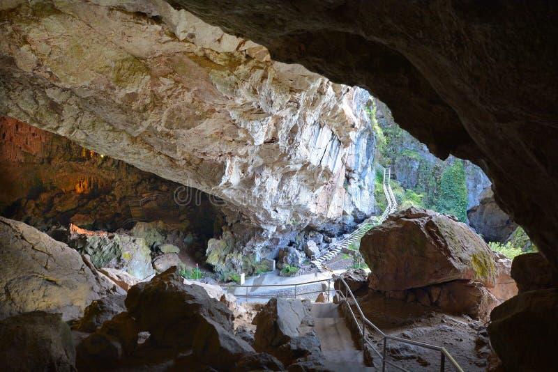 Jenolan holt Blauwe Bergen Nieuw Zuid-Wales Australië uit stock fotografie