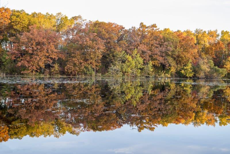 Jensen Lake Apple-Tal Mangan lizenzfreie stockbilder