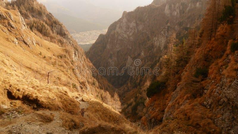 The Jepii Mici Valley. In Bucegi Mountain stock image