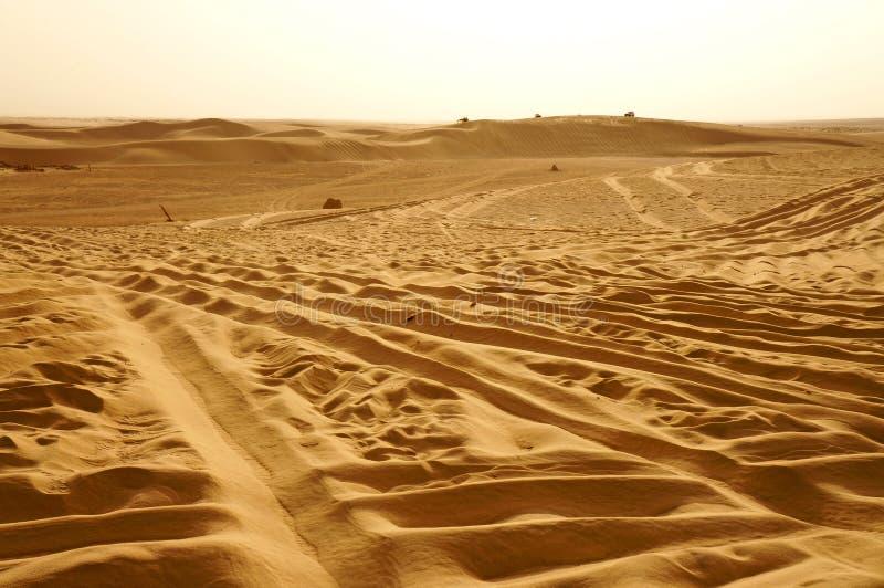 Jepps på dynerna av den Sahara öknen arkivbild
