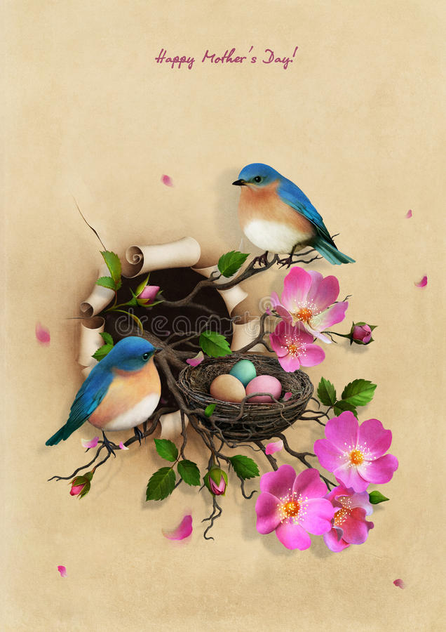 Jerarquía con dos pájaros azules libre illustration