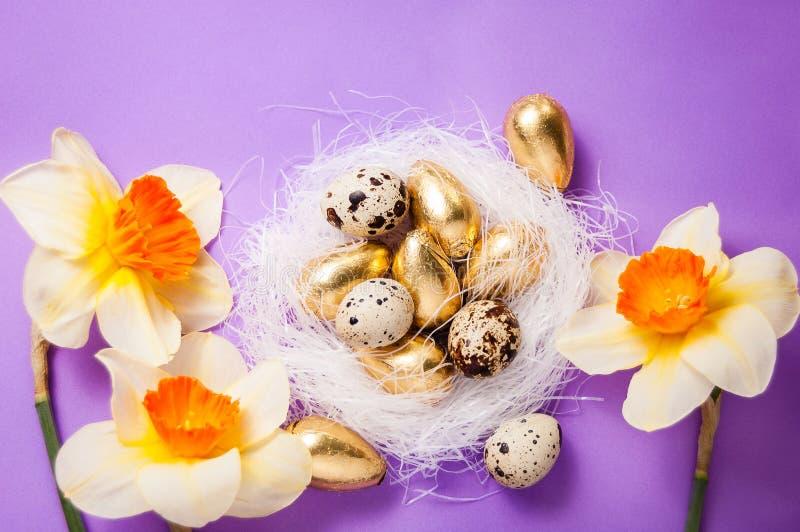Jerarquía con los huevos y los narcisos imagen de archivo