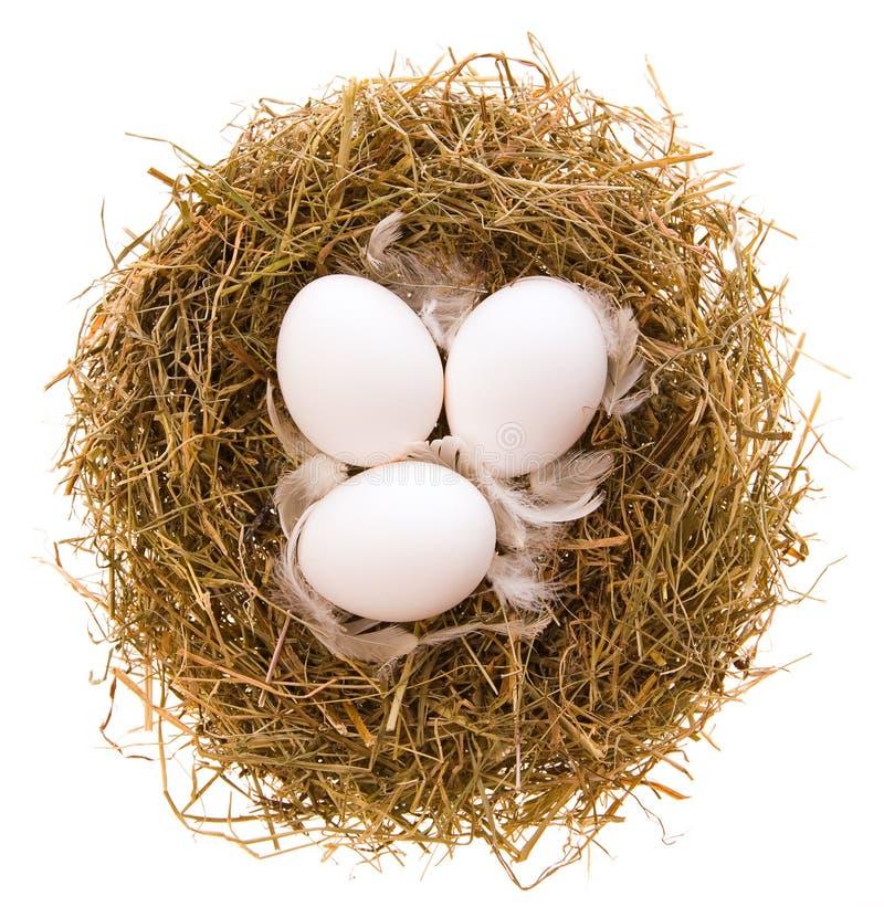 Jerarquía y huevos imágenes de archivo libres de regalías