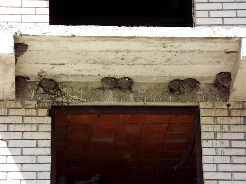 Jerarquías de tragos en el edificio imágenes de archivo libres de regalías