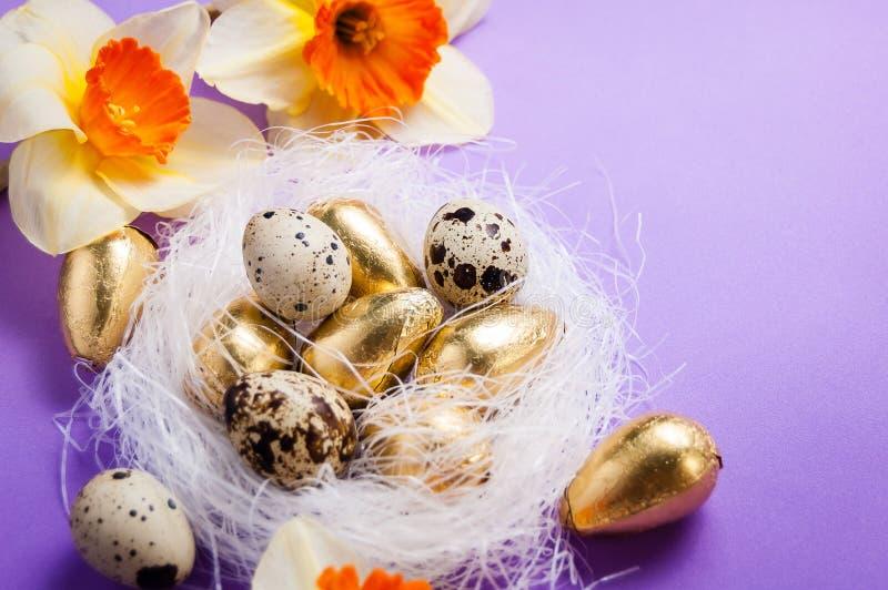 Jerarquice con los huevos y los narcisos en un fondo azul pascua fotografía de archivo