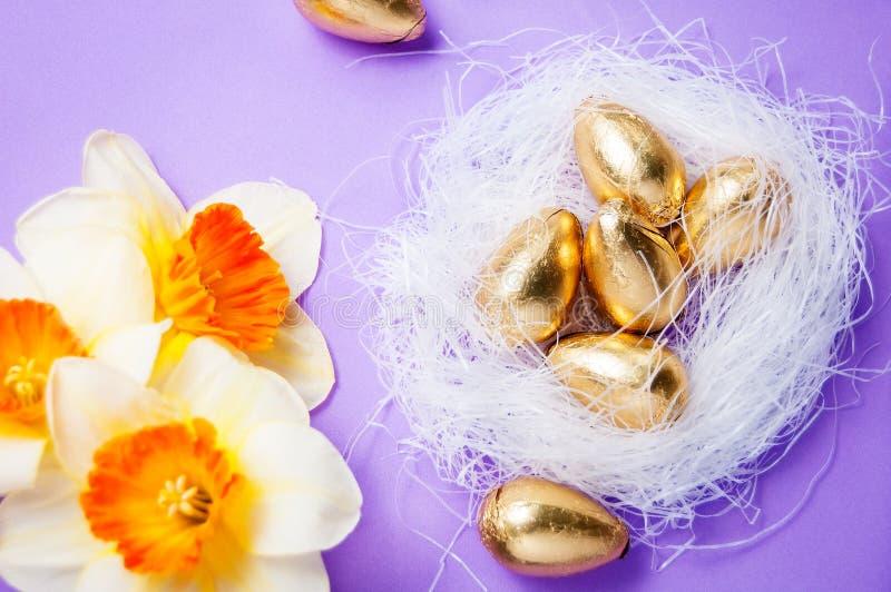Jerarquice con los huevos y los narcisos en un fondo azul pascua foto de archivo libre de regalías