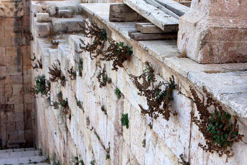 Jerash city, Jordan. Ruins of the Roman city of Gerasa, Jerash, Jordan royalty free stock photos