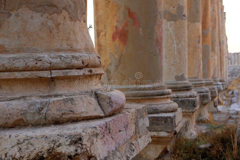 Jerash city, Jordan. Ruins of the Roman city of Gerasa, Jerash, Jordan stock photo