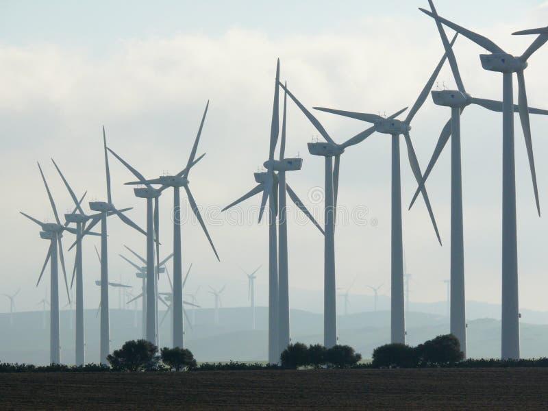 Jerez de la Frontera, Espagne 01/04/2007 Ferme de vent avec le bl ?lev? photo libre de droits