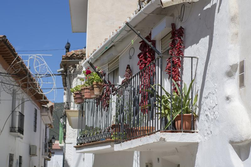 Jerez Marquesado foto de stock royalty free