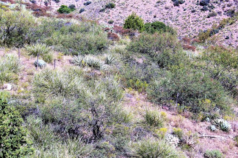 Jerome Arizona State Historic Park. Jerome State Historic Park a mining region in the northeast of the Black Hills, east Yavapai County, Arizona USA royalty free stock photo